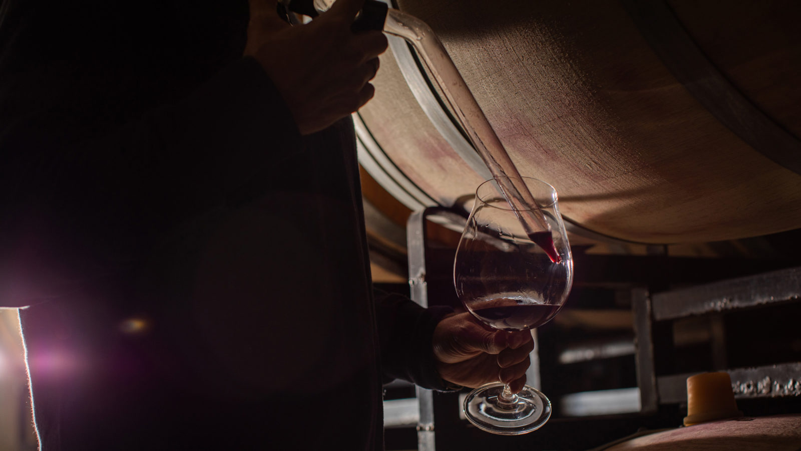winemaker thieving wine from barrel